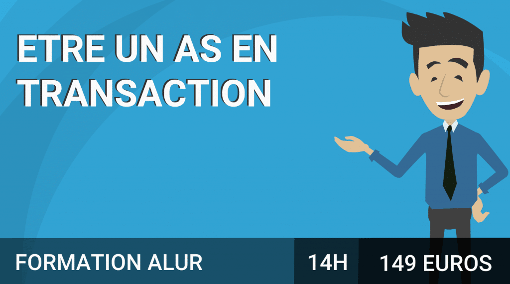 transaction-alur