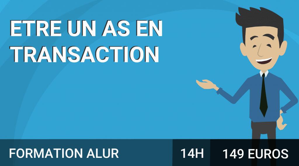 transaction-alur